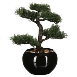 Drzewko bonsai w czarnej doniczce 36 cm