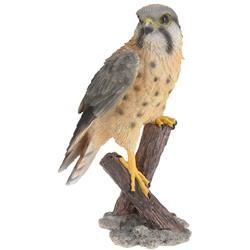 Dekoracyjny ptak, jastrząb do ogrodu